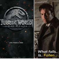 Jurassic World, Life, and Lol: @TheNiceGuyCast  WAYNE  1979  JURASSI WORLD  LIFE FINDS A WAY  is  What falls..  Is.. Fallen...  JUNE 22. 2018 Sooo what do we think of the title for the Jurassic World sequel? I dig it. Your corny fossil pun for the day lol... 🤢 [Like•Follow•Play•@TheNiceGuyCast]