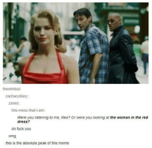 Woman in the red dress - Meme by LastGoodMilkPig :) Memedroid: thenimbus  zacharydia  ry  zsnes  this-mess-that-i-am  Were you listening to me, Neo? Or were you looking at the woman in the red  dress?  oh fuck you  omg  this is the absolute peak of this meme Woman in the red dress - Meme by LastGoodMilkPig :) Memedroid