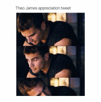 favorite: Theo James appreciation tweet favorite
