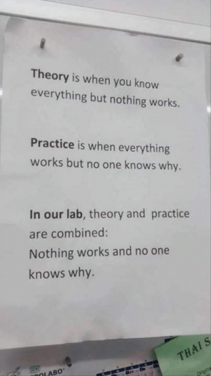 Thais: Theory is when you know  everything but nothing works.  Practice is when everything  works but no one knows why.  In our lab, theory and practice  are combined:  Nothing works and no one  knows why.  THAIS  aDOLABO