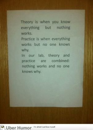 failnation:  In the lab…: Theory is when you know  everything but nothing  works.  Practice is when everything  works but no one knows  why.  In our lab, theory and  practice are combined:  nothing works and no one  knows why.  Uber Humor  I'm afraid I just blue myself. failnation:  In the lab…