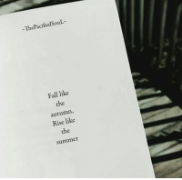 Fall, Summer, and Like: ThePacifiedSouL  Fall like  the  autumn,  Rise like  the  summer