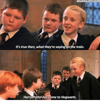 (1-3) comment scene requests from the Sorcerer's Stone because I'm snowed in and have nothing better to do than make some scene edits ✏️ harrypotter: ThePerksOfBeingaWeasley  It's true then, what they're saying on the train.  Harry Potter has come to Hogwarts. (1-3) comment scene requests from the Sorcerer's Stone because I'm snowed in and have nothing better to do than make some scene edits ✏️ harrypotter