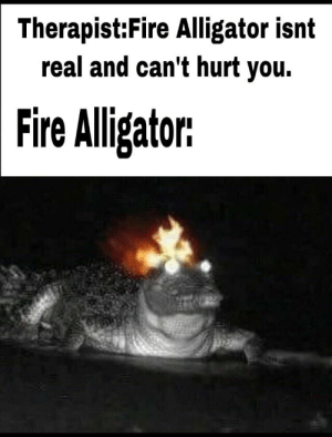 me_irl: Therapist:Fire Alligator isnt  real and can't hurt you.  Fire Iligator me_irl
