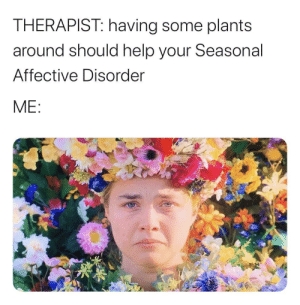 meirl by Snapped_Marathon MORE MEMES: THERAPIST: having some plants  around should help your Seasonal  Affective Disorder  ME: meirl by Snapped_Marathon MORE MEMES