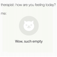 Wow Reddit: therapist: how are you feeling today?  me:  Wow, such empty