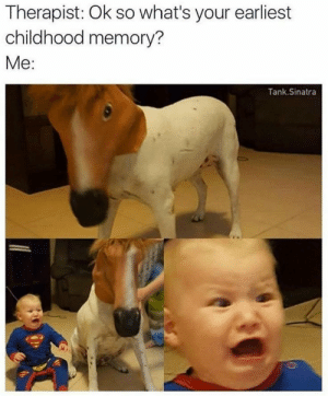 meirl by Nyskit MORE MEMES: Therapist: Ok so what's your earliest  childhood memory?  Me:  Tank.Sinatra meirl by Nyskit MORE MEMES
