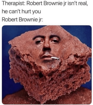 You, Real, and Robert: Therapist: Robert Brownie jr isn't real,  he can't hurt you  Robert Brownie jr: O