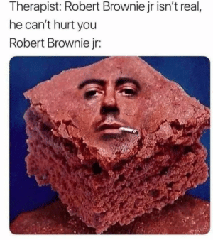 Funny, Jokes, and Thought: Therapist: Robert Brownie jr isn't real,  he can't hurt you  Robert Brownie jr: Just thought I'd post this gem -- #funny #funnymemes #funnypictures #funnyquotes #funnyanimals #jokes #funnytexts #dankmemeshot