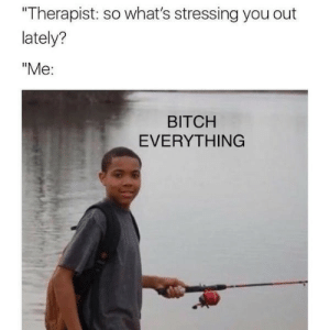 "Bitch, You, and Whats: Therapist: so what's stressing you out  lately?  ""Me:  BITCH  EVERYTHING Carefully Curated Crap"