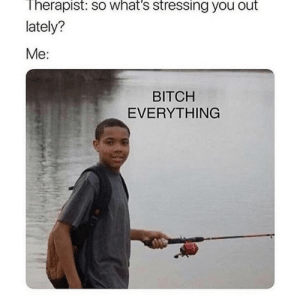Everything: Therapist: so what's stressing you out  lately?  Me:  BITCH  EVERYTHING Everything