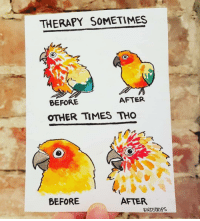 True, Therapy, and Times: THERAPY SOMETIMES  BEFORE  AFTER  OTHER TIMES THO  BEFORE  AFTER  BIRDSIRIPS From BirdStrips and very true.