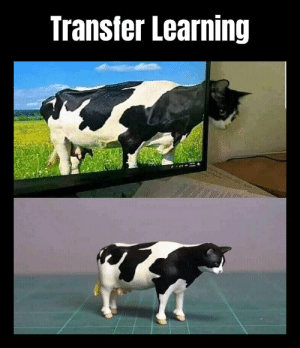 There's transfer learning for you: There's transfer learning for you