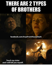 GameofThrones HBO: THERE ARE 2 TYPES  OF BROTHERS  facebook.com/AryaFromHouseStark  Touch my sister  and I will kill you myself. GameofThrones HBO