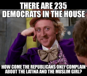 Memes, Muslim, and Weird: THERE ARE 235  DEMOCRATS IN THE HOUSE  HOW COME THE REPUBLICANS ONLY COMPLAIN  ABOUT THE LATINA AND THE MUSLIM GIRL? Weird...