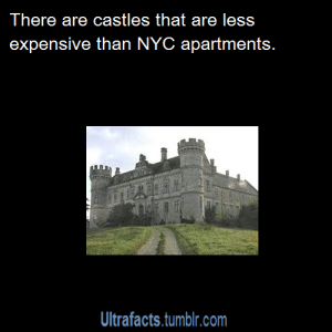 Being Alone, Anaconda, and Apple: There are castles that are less  expensive than NYC apartments.  Ultrafacts.tumblr.com pyronoid-d:  thantos1991: brunhiddensmusings:  greatfulldedd:  pizzaismylifepizzaisking:   legend-of-sora:  kazu-kuns-corner:  ultrafacts:  Source If you want more facts, follow Ultrafacts  I'm buying a castle.    https://www.moulin.nl/en/realestate/castle-for-sale-france-midi-pyrenees-gers-32_102909/ Update: The castle as of April 2015 is actually only around $1,300,000 USD now due to the currency exchange rates! :D    this goes even further, some European countries will give you a castle for free if you submit a plan stating how you intend to restore or preserve it. Italy alone for example has somewhere between 100 and 300 castles they intend to give away to anyone with intent to be a caretaker, they literally cant keep track of how many discount castles are up for grabsit doesn't even have to be an ambitious plan, even if it says you just intend to keep it from becoming more shitty and will occasionally add a few bricks when you can afford it. given that most of them come with land you could convert the grounds to actually produce enough income to pay for the repairs- like setting up apple trees and brewing cider you sell with your castle name on the bottle, or raising some goats for cheese, a hobby farm could turn this into an actual income opportunity. hell, throwing parties at the castle could make it an income opportunitythey will literally -GIVE- you a castle to make sure someone is taking care of it rather then let them all sit empty    Could defenitly make bank turning one into a huge paintball arena or a L.A.R.P. zone/retreat   Gonna move into an old castle and sell it out as a John Wick-esque paintball arena