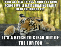 Bitch, Imgur, and Pet: THERE ARE FEW THINGS SADDER TO COME  ACROSS WHILE MASTURBATING THAN A  DEAD CHILDHOOD PET  IT'S A BITCH TO CLEAN OUT OF  THE FUR TOO  made on imgur .
