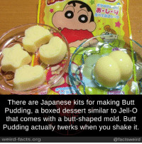Butt, Facts, and Memes: There are Japanese kits for making Butt  Pudding, a boxed dessert similar to Jell-O  that comes with a butt-shaped mold. Butt  Pudding actually twerks when you shake it.  weird-facts.org  @facts weird