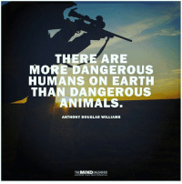douglas williams: THERE ARE  MORE DANGEROUS  HUMANS ON EARTH  THAN DANGEROUS  ANIMALS  ANTHONY DOUGLAS WILLIAMS  MIND
