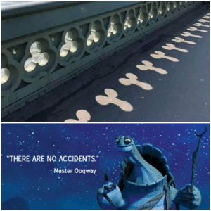 "Ah yes, modern art: ""THERE ARE NO ACCIDENTS.  - Master Oogway Ah yes, modern art"