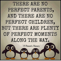 🙌🏼: THERE ARE NO  PERFECT PARENTS,  AND THERE ARE NO  PERFECT CHILDREN  BUT THERE ARE PLENTY  OF PERFECT MOMENTS  ALONG THE WAY.  A Parents Humor  G G  O O 🙌🏼