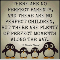 Humor Memes: THERE ARE NO  PERFECT PARENTS,  AND THERE ARE NO  PERFECT CHILDREN,  BUT THERE ARE PLENTY  OF PERFECT MOMENTS  ALONG THE WAY.  A Parent's Humor  C G  O O