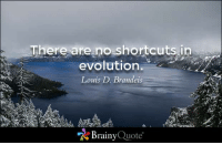 Memes, 🤖, and Brainyquote: There are no shortcuts in  evolution  Louis D. Brandeis  Brainy  Quote There are no shortcuts in evolution. - Louis D. Brandeis https://www.brainyquote.com/quotes/quotes/l/louisdbra100215.html #brainyquote #QOTD #water #inspiration
