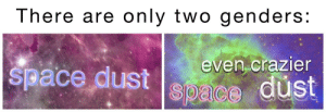 Space, Dust, and There: There are only two genders:  even crazier  space dust Space dust