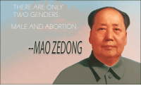 Abortion: THERE ARE ONLY  TWO GENDERS  MALE AND ABORTION  MAO ZEDONG