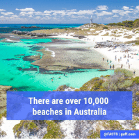 10,685 beaches to be exact, according to the Australian government's website.: There are over 10,000  beaches in Australia  @FACTS I guff.com 10,685 beaches to be exact, according to the Australian government's website.