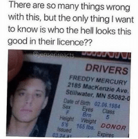 Apparently, Memes, and Mercury: There are so many things wrong  with this, but the only thing I want  to know is who the hell looks this  good in their licence??  eiensenreacs  DRIVERS  FREDDY MERCURY  2185 Mackenzie Ave.  Stillwater, MN 55082-0  Date of Birth 02.06.1984  Sex Eyes Class  Height Weight DONOR  165 Okay apparently Dean Winchester is a 5ft6 Female with brown eyes 😂😂😂