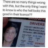 Memes, Sex, and Date: There are so many things wrong  with this, but the only thingIwant  to know is who the hell looks this  good in their licence??  DRIVERS  FREDDY MERCURY  2185 Mackenzie Ave.  Stillwater, MN 55082-0  Date of Bith 02.06.1984  Sex Eyes Class  Height Weight  issued  165 DONOR spn Supernatural spnfamily jaredpadalecki jensenackles mishacollins sam dean winchesters castiel destiel fandom ship otp