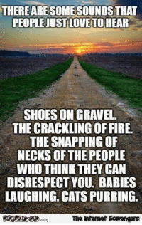 Cats, Fire, and Friday: THERE ARE SOME SOUNDS THAT  PEOPLE JUSTLOVE TO HEAR  SHOES ON GRAVEL  THE CRACKLING OF FIRE.  THE SNAPPING OF  NECKS OF THE PEOPLE  WHO THINK THEY CAN  DISRESPECT YOU. BABIES  LAUGHING. CATS PURRING.  The ntemet Scavengers <p>Jocular Internet Nonsense  Funny Friday pics  PMSLweb </p>
