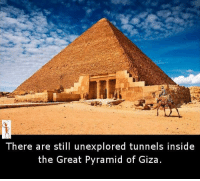 pyramids of giza: There are still unexplored tunnels inside  the Great Pyramid of Giza.