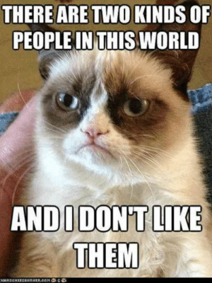"Memes, World, and Them: THERE ARE TWO KINDS OF  PEOPLE IN THIS WORLD  ANDUDON'T LIKE  THEM  NSCHEEREURGER.cOMe ""There are two kinds of people in this world, and I don't like them.""  #grumpycatmemes #ripgrumpycat #memes"