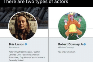 RDJ is a god by Wolf290703 MORE MEMES: There are two types of actors  E I  Brie Larson  @brielarson  Robert Downey Jr  @RobertDowneyJr  Actor / Mushroom Forager SCUBA  Certified Diver /Scientific American  Subscriber/ Dog Mom / Captain Marvel /  Generally Stoked  You know who I am. RDJ is a god by Wolf290703 MORE MEMES