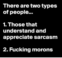 Memes, Appreciate, and Sarcasm: There are two types  of people...  1. Those that  understand and  appreciate sarcasm  2. Fucking morons