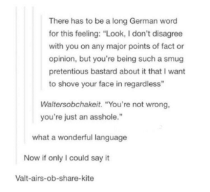 """the wonders of linguistics: There has to be a long German word  for this feeling: """"Look, I don't disagree  with you on any major points of fact or  opinion, but you're being such a smug  pretentious bastard about it that I want  to shove your face in regardless""""  Waltersobchakeit. """"You're not wrong,  you're just an asshole.""""  91  what a wonderful language  Now if only I could say it  Valt-airs-ob-share-kite the wonders of linguistics"""