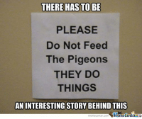 Memes, 🤖, and Com: THERE HAS TO BE  PLEASE  Do Not Feed  The Pigeons  THEY DO  THINGS  AN INTERESTING STORY BEHIND THIS  Cine  meme Center.com Terrible terrible things!