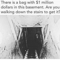 Water, Down, and This: There is a bag with $1 million  dollars in this basement. Are vou  walking down the stairs to get it? <p>Lemme just bring some holy water and a 🅱oneless 🅱atermelon</p>