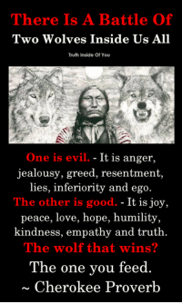 The battle of two wolves..!! (Y): There Is A Battle Of  Two Wolves Inside Us All  Truth Inside Of You  One is evil. - It is anger,  jealousy, greed, resentment,  lies,  inferiority and ego  The other is good. - It is joy,  peace, love, hope, humility  kindness, empathy and truth.  The wolf that wins?  The one vou feed  Cherokee Proverb The battle of two wolves..!! (Y)