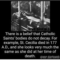 Bodies , Memes, and New Orleans Saints: There is a belief that Catholic  Saints' bodies do not decay. For  example, St. Cecilia died in 177  A.D., and she looks very much the  same as she did at her time of  death. omr.darkwelb