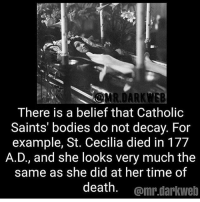 How many people have my post notifications on??: There is a belief that Catholic  Saints' bodies do not decay. For  example, St. Cecilia died in 177  A.D., and she looks very much the  same as she did at her time of  death. @mr.darkwelb How many people have my post notifications on??