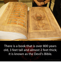 Books, Creepy, and Facts: There is a book that is over 800 years  old, 3 feet tall and almost 2 feet thick;  it is known as the Devil's Bible.  fb.com/facts weird Go like Creepy Society