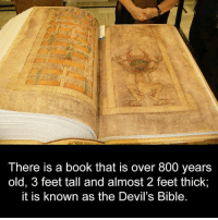 Memes, Devil, and Bible: There is a book that is over 800 years  old, 3 feet tall and almost 2 feet thick;  it is known as the Devil's Bible.