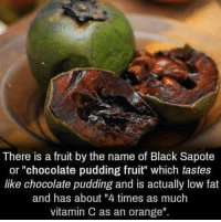 "Dank, 🤖, and Vitamin C: There is a fruit by the name of Black Sapote  or ""chocolate pudding fruit"" which tastes  like chocolate pudding and is actually low fat  and has about ""4 times as much  vitamin C as an orange"