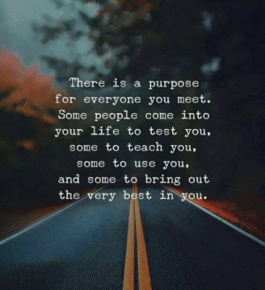 Bring Out: There is a purpose  for everyone you meet.  Some people come into  your life to test you,  some to teach you,  some to use you,  and some to bring out  the very best in you.