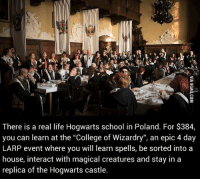 "Dank, 🤖, and Epic: There is a real life Hogwarts school in Poland. For $384,  you can learn at the ""College of Wizardry"", an epic 4 day  LARP event where you will learn spells, be sorted into a  house, interact with magical creatures and stay in a  replica of the Hogwarts castle. Time to become a wizard! http://goo.gl/uPbpue  9GAG Mobile App: www.9gag.com/mobile?ref=9fbp"