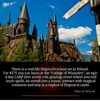 "Memes, Poland, and 🤖: There is a real life Hogwarts school set in Poland.  For $375 you can learn at the ""College of Wizardry"", an epic  4 day LARP Clive action role playing) event where you will  learn spells, be sorted into a house, interact with magical  creatures and stay in a replica of Hogwarts castle.  Weird World"