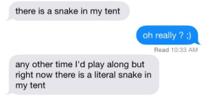 Snake, Time, and Play: there is a snake in my tent  oh really ? )  Read 10:33 AM  any other time I'd play along but  right now there is a literal snake in  my tent